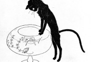 cat-watching-fish-bowl